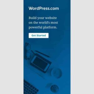 WordPress Blog ali Spletna Stran